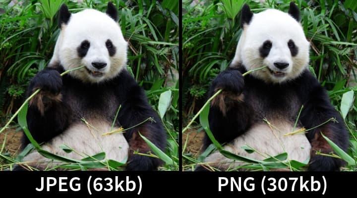 PNG v JPEG