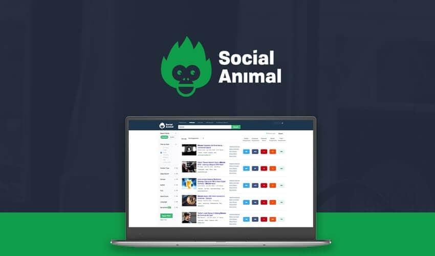 Social Animal AppSumo Deal