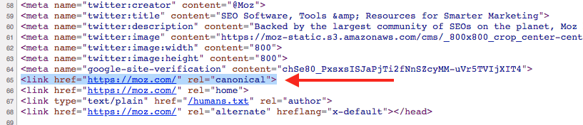 Canonical Tag Example 2020