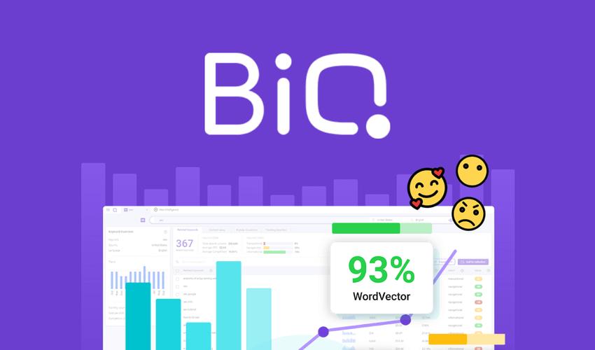 BiQ AppSumo Deal